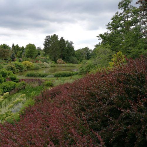 Arboretum Wojslawice